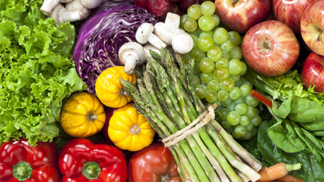 human nuturion Human nutrition: human nutrition, process by which substances in food are transformed into body tissues and provide energy for the full range of physical and mental activities that make up human life.