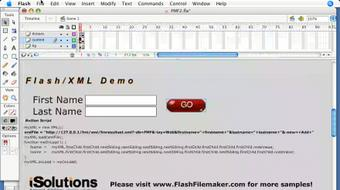 Flash 8 and FileMaker 8.5 Integration course image