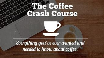 Become a Coffee Expert course image
