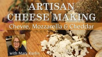 Artisan Cheese Making: Chevre, Mozzarella & Cheddar course image