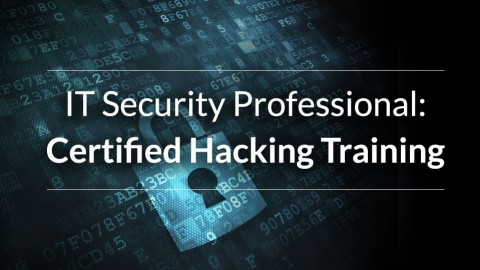 Udemy - Hacking Techniques for IT Professionals 2 0 Complete Course