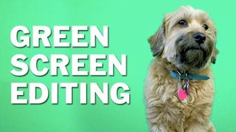 Green Screen Editing: Premiere Pro, Final Cut, After Effects course image
