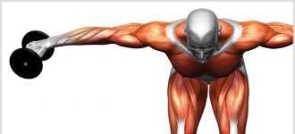 Essentials of Strength Training - DVD, digital video course course image