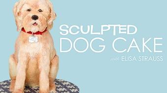 Sculpted Dog Cake course image