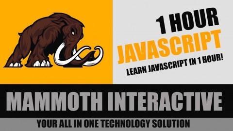 1 Hour JavaScript course image