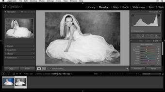 Enhancing a Black-and-White Wedding Photo with Lightroom course image