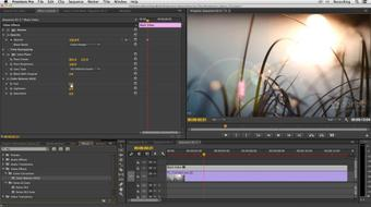 Premiere Pro and After Effects: Enhancing Production Value course image