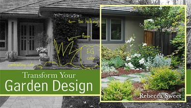 Transform Your Garden Design course image