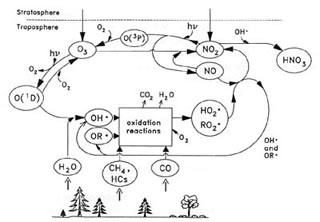 Chemicals in the Environment: Fate and Transport course image