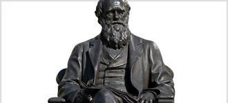 Darwinian Revolution - CD, digital audio course course image