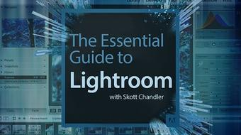 The Essential Guide to Lightroom course image