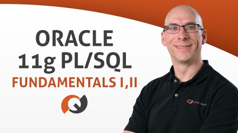 Oracle PL/SQL Fundamentals vol. I & II course image