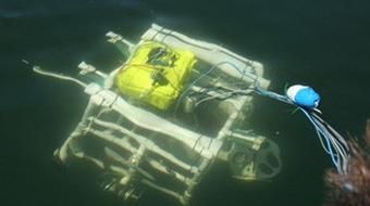 Introduction to Ocean Science and Engineering course image