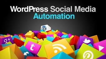 WordPress Social Media Automation course image