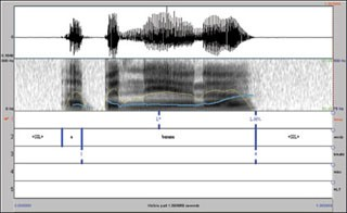 Transcribing Prosodic Structure of Spoken Utterances with ToBI course image
