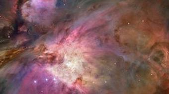 In the Night Sky: Orion course image