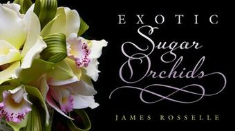 Exotic Sugar Orchids course image