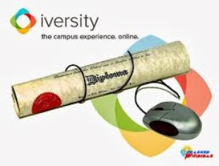 Iversity cover image