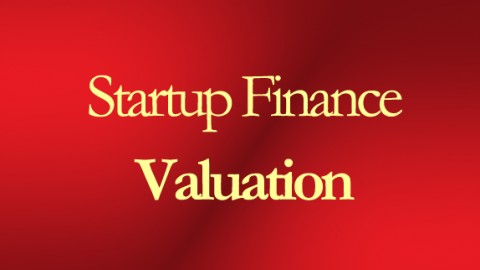 The Art Of Financial Valuation With Certificate course image