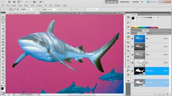 Photoshop Masking and Compositing: Fundamentals course image