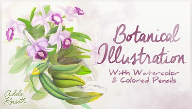 Botanical Illustration: With Watercolor & Colored Pencils course image
