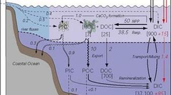 Marine Organic Geochemistry course image
