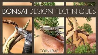 Bonsai Design Techniques course image