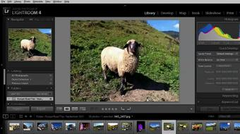 Getting Started with Lightroom 4 course image