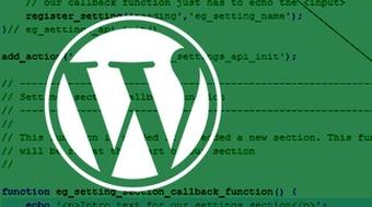 Using the WordPress Settings API course image