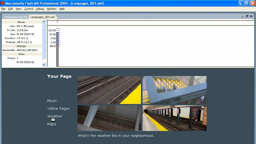 ActionScript 2.0 Beyond the Basics course image