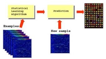 Networks for Learning: Regression and Classification course image