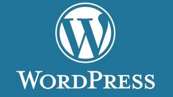 WordPress for Beginners: Create Professional Websites course image