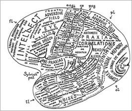 Neuroscience and Society course image