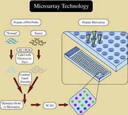 Genomic Medicine course image