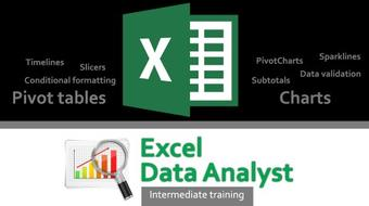 Excel 2013 Data Analyst Intermediate Training course image