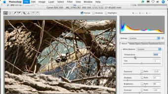 Photoshop CS2 FAQs course image