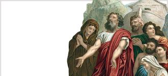 Book of Genesis - DVD, digital video course course image