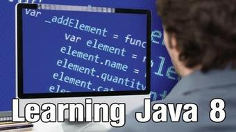 Learning To Program In Java 8 - Video Based Training course image