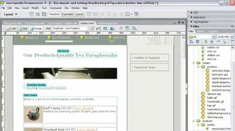 Dreamweaver 8 Beyond the Basics course image