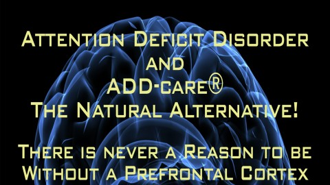 Learn about Attention Deficit Disorder course image