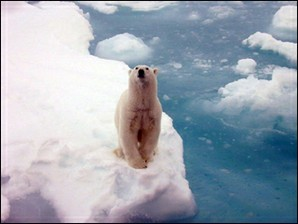 Global Warming Science course image