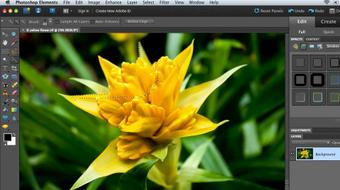 Combining Images with Photoshop Elements 9 course image