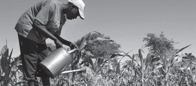 Growing Prosperity: Developing Repeatable Models® to Scale the Adoption of Agriculture Innovations course image
