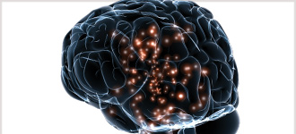 Origins of the Human Mind - DVD, digital video course course image
