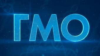 ГМО: технологии создания и применение course image