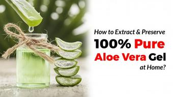 How to Extract and Preserve 100% Pure Aloe Vera Gel at Home course image