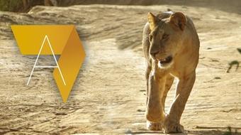 Gestion des aires protégées en Afrique course image