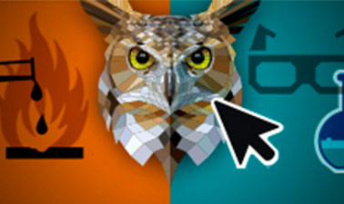 Lab Safety: The Interactive Game of Don't Endanger the Owls course image