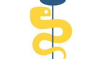 Программирование на Python course image