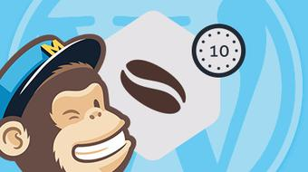 Add MailChimp Signup to Your WordPress Site course image